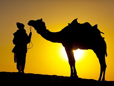 Groepsreis India Rajasthan; Het land van de Maharadja's
