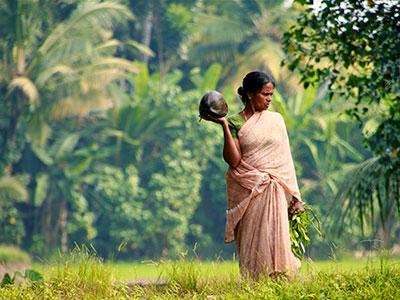 Groepsreis Zuid-India 'on a Shoestring'; Een kruidige sensatie