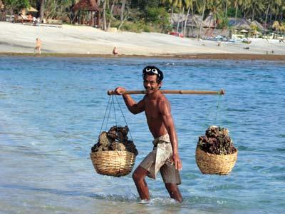 Groepsreis Indonesië: Java & Bali; De 'Gordel van Smaragd'
