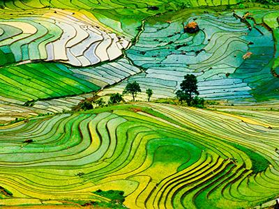 Groepsreis Vietnam 'on a Shoestring'; Rijstterrassen en koloniale grandeur afbeelding