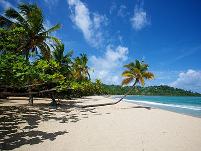Groepsreis Zuid-Afrika & Mozambique; Natuur & Strand afbeelding